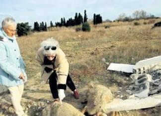 Францію шокували мігранти, які ґвалтують і вбивають овець