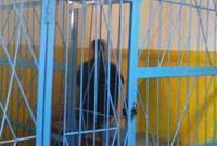 В Новосибирске арестован Джек Потрошитель