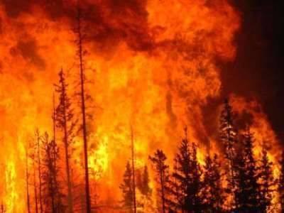 В Бурятии локализован один из сложнейших лесных пожаров в России