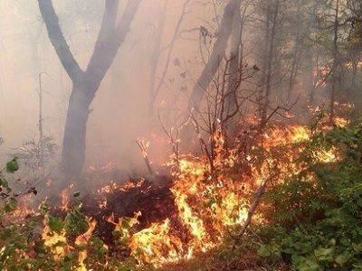 На Камчатке локализовали природный пожар, угрожавший райцентру