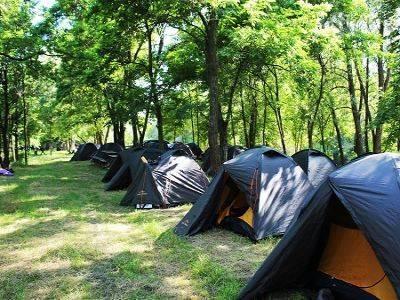 В Приморье из нелегального лагеря срочно эвакуировали детей