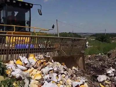 В Калининграде уничтожили более 10 тонн санкционных овощей и фруктов
