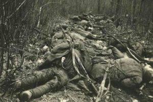 Советский цинизм: удобрения из павших солдат Второй Мировой