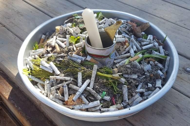 Бунтующее Подмосковье: в регионе активизировалась борьба против мусорных полигонов