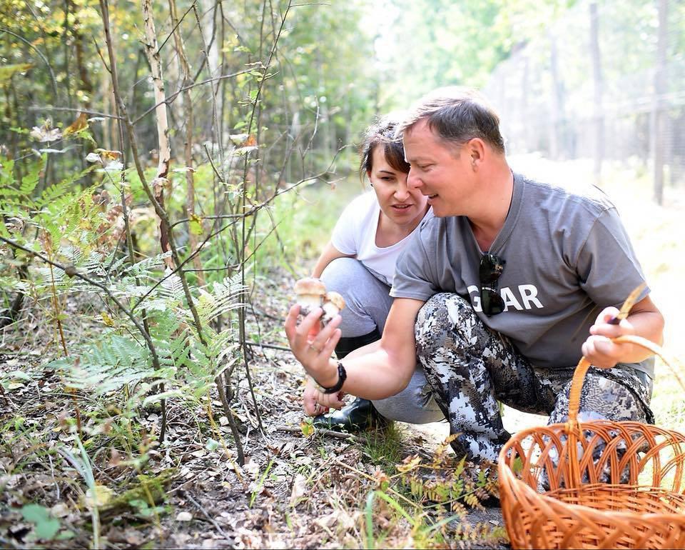 Лес для Ляшка. Как заповедное урочище под Киевом перешло в частные руки