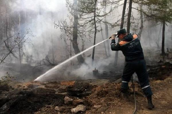 Почему с каждым годом огненная стихия в Красноярском крае становится всё злее и беспощаднее?