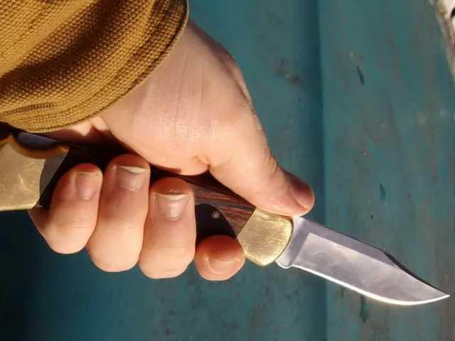 Нанес ножом 30 ударов в шею: В Киеве школьник убил отца, защищая мать и сестру