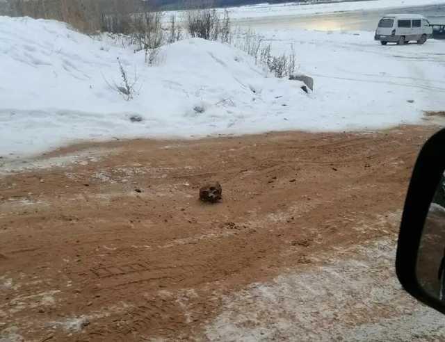 В России дорогу посыпали песком с человеческими костями