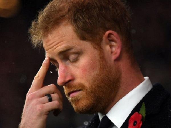Придворный заговор: королевский дворец намеренно унизил принца Гарри