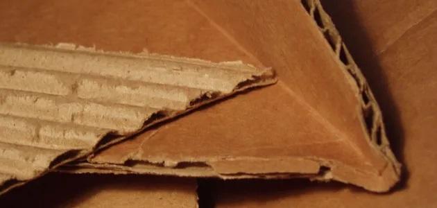 В Крыму решили продавать «экологические» гробы из картона