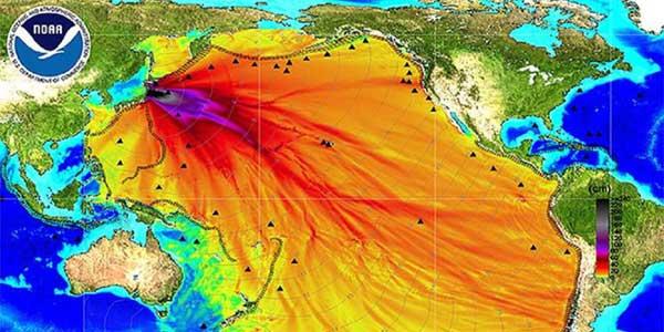 Япония превращает Тихий океан в радиоактивную помойку. Но об этом не принято говорить вслух.