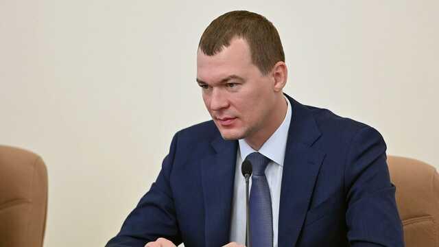 «Базик» Дегтярева «целится» в сенат
