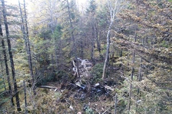 Экипаж рухнувшего под Хабаровском Ан-26 перепутал направление перед крушением