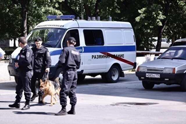 СМИ: в Омске 15-летняя школьница планировала взорвать школу